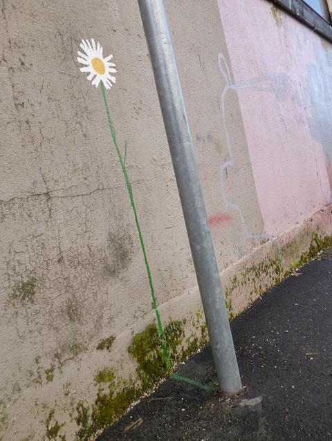 dran_fleur