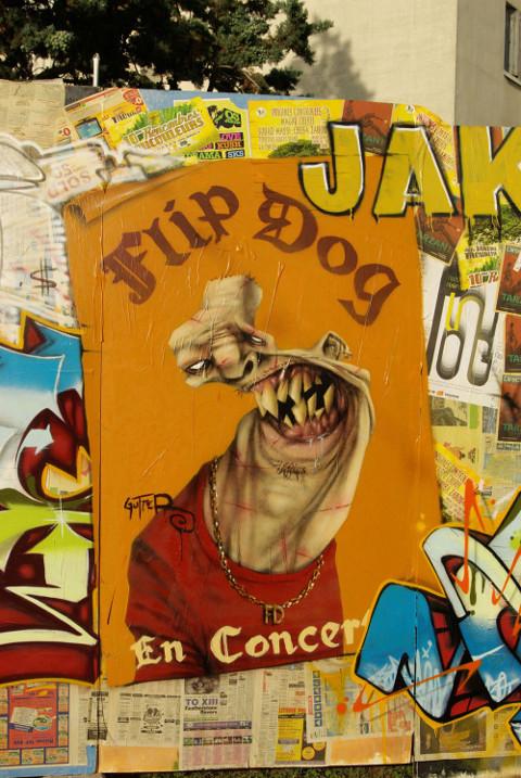 2009 Flip Dog
