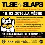 TLSE SLAPS