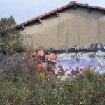Graffiti !!!